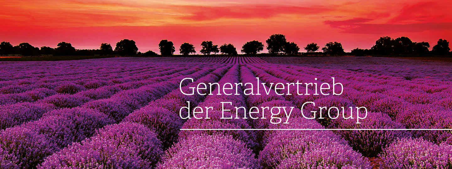 Generalvertrieb Energy Group